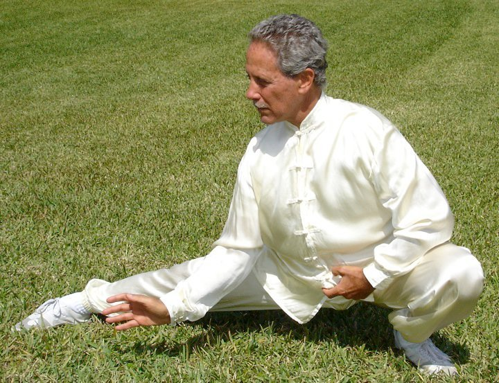 Chen Style Tai Chi Laojia Yilu (Old Frame First Routine)